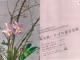 第53回埼玉県いけばな連合会展ポスター